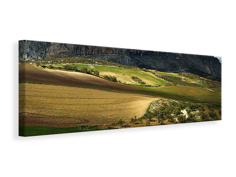Panoramic Canvas Print Villanueva De La Concepcion