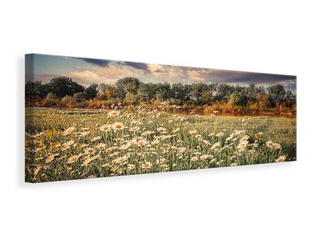 Panoramic Canvas Print The Ox On The River