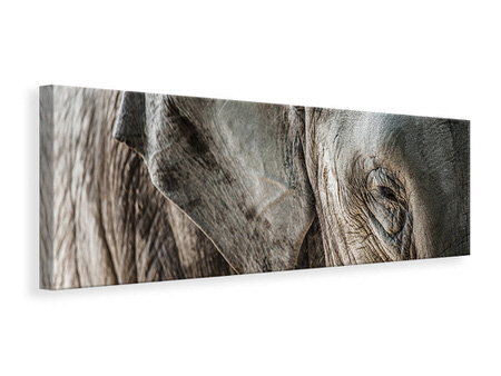 Panoramic Canvas Print Close Up Elephant