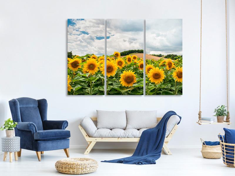 Stampa su tela 3 pezzi Paesaggio con girasoli | Ordina ora!