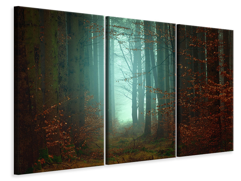 3 Piece Canvas Print Mood in the forest