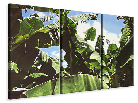 3 Piece Canvas Print In the middle of the jungle