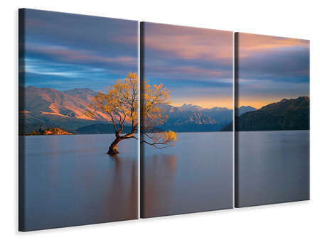 3 Piece Canvas Print Morning Glow