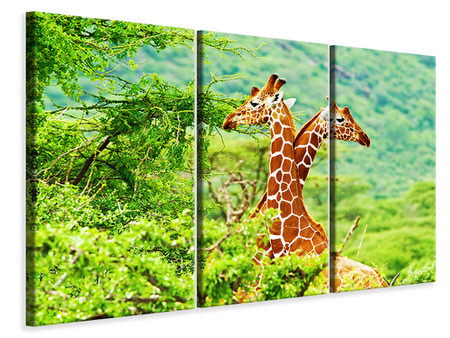 3 Piece Canvas Print Giraffes Love