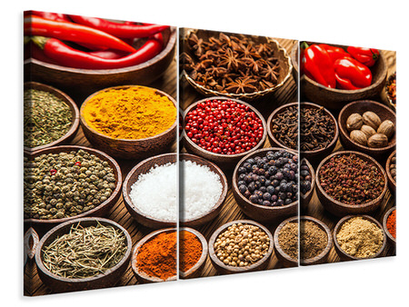 3 Piece Canvas Print Hot Spices