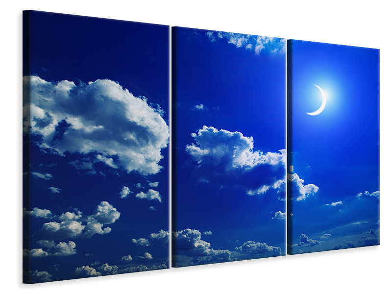 3 Piece Canvas Print The Moon