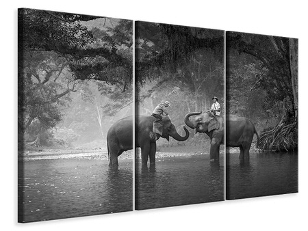 3 Piece Canvas Print Two Elephants
