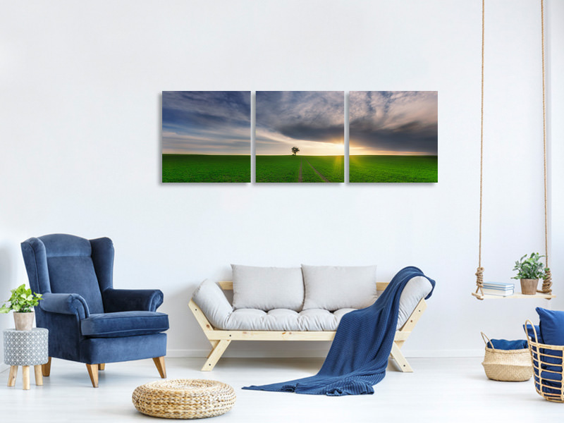 Panoramic 3 Piece Canvas Print Loner In The Sun