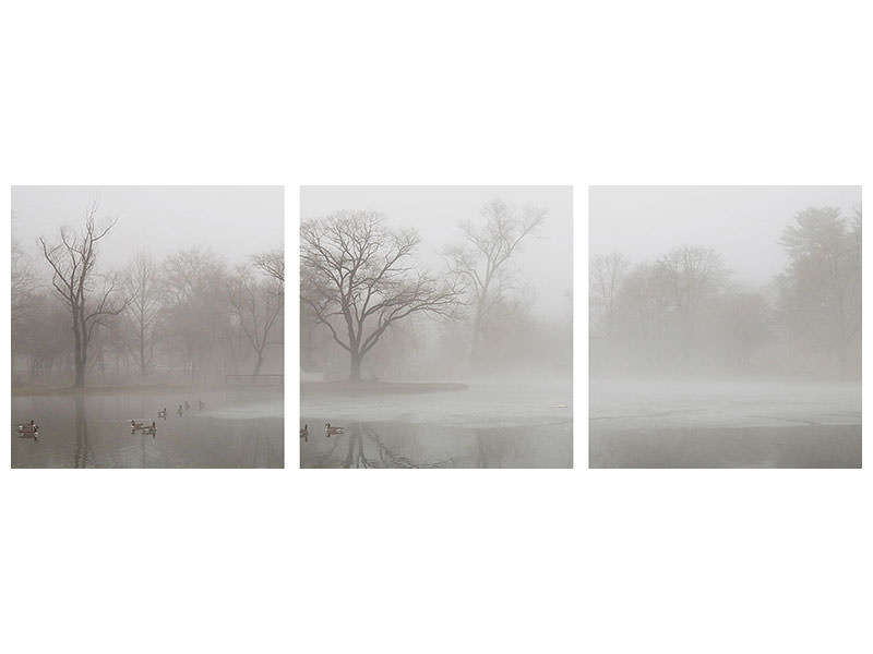 Panoramic 3 Piece Canvas Print Untitled 13