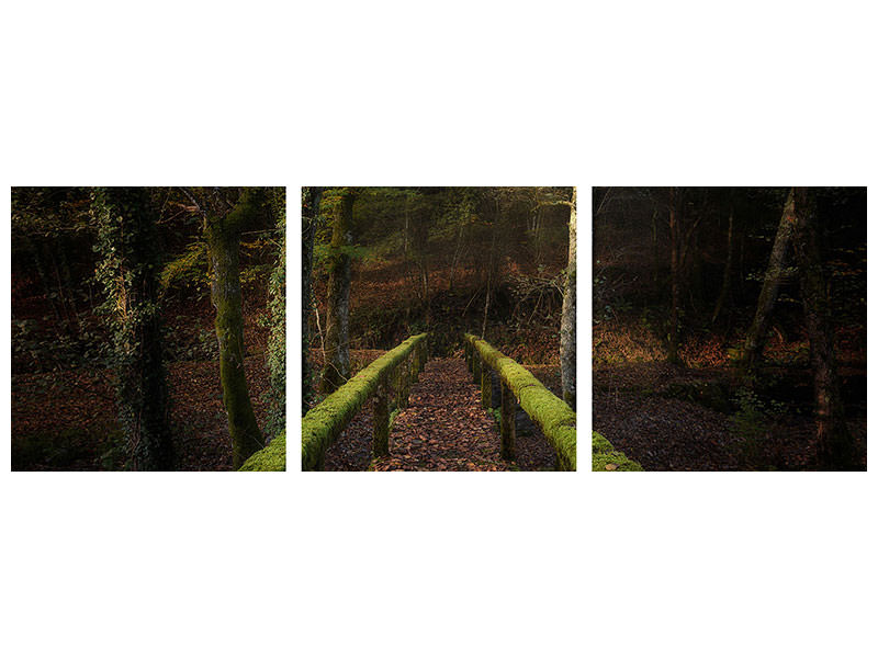 Panoramic 3 Piece Canvas Print The Way To The Forest