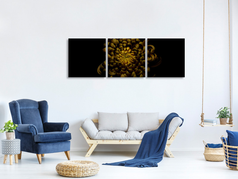 Panoramic 3 Piece Canvas Print Chrysanthemum