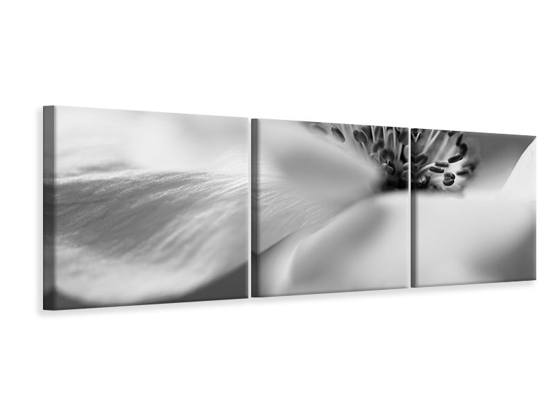 Panoramic 3 Piece Canvas Print Untitled 15