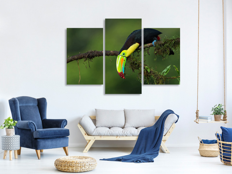 Modern 3 Piece Canvas Print The Colors Of Costa Rica