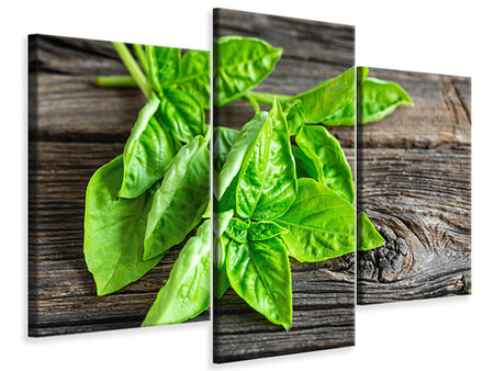 Modern 3 Piece Canvas Print Basil Leaves