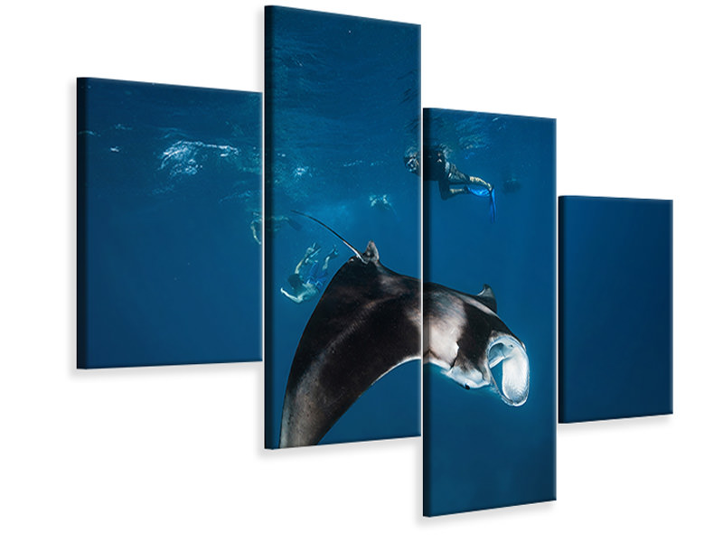 Modern 4 Piece Canvas Print Manta Ray II