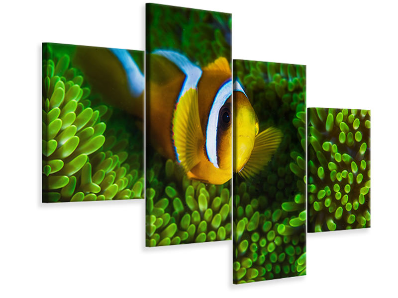 Tableau sur Toile en 4 parties moderne Yellow Clownfish On Green Anemon