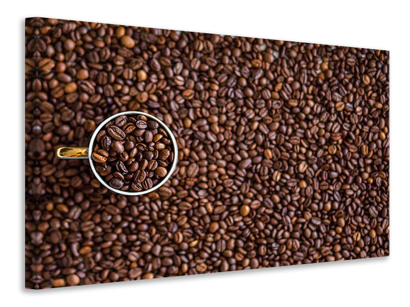 Canvas print All coffee beans