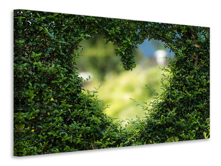 Canvas print The heart in the hedge