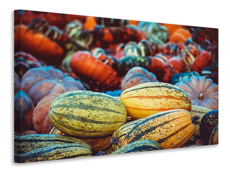 Canvas print Pumpkin types