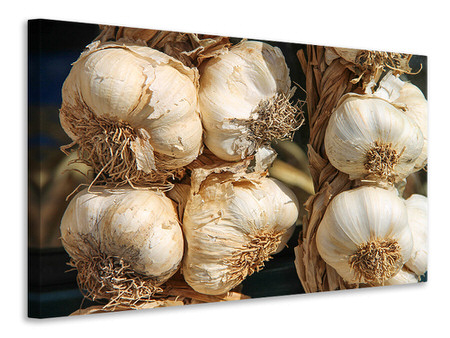 Canvas print The garlic XL