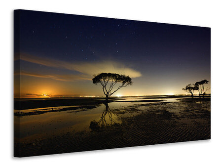 Canvas print Moonrise