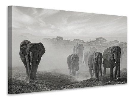 Canvas print Sequence Of Emotion