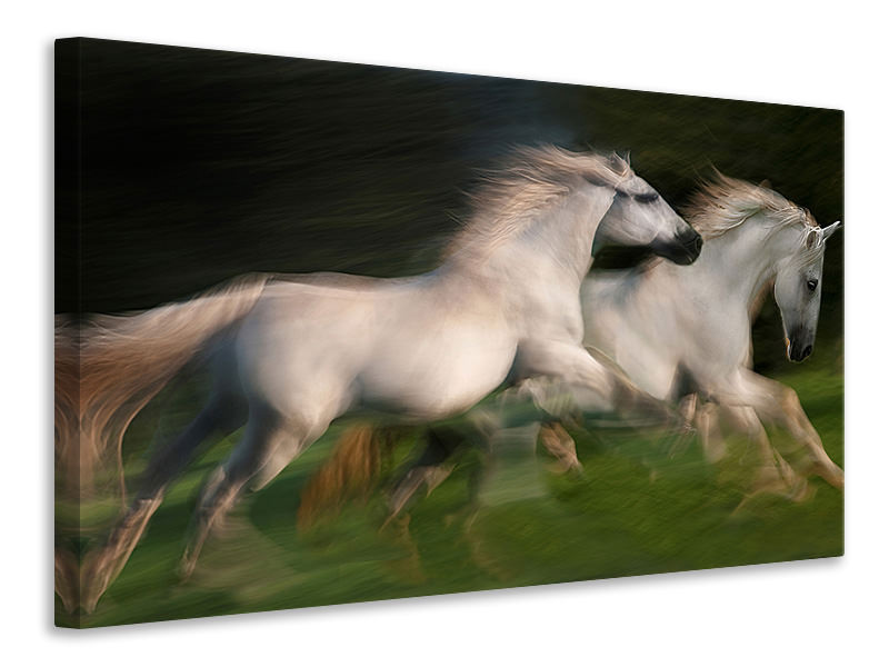 Canvas print Gallop For Two