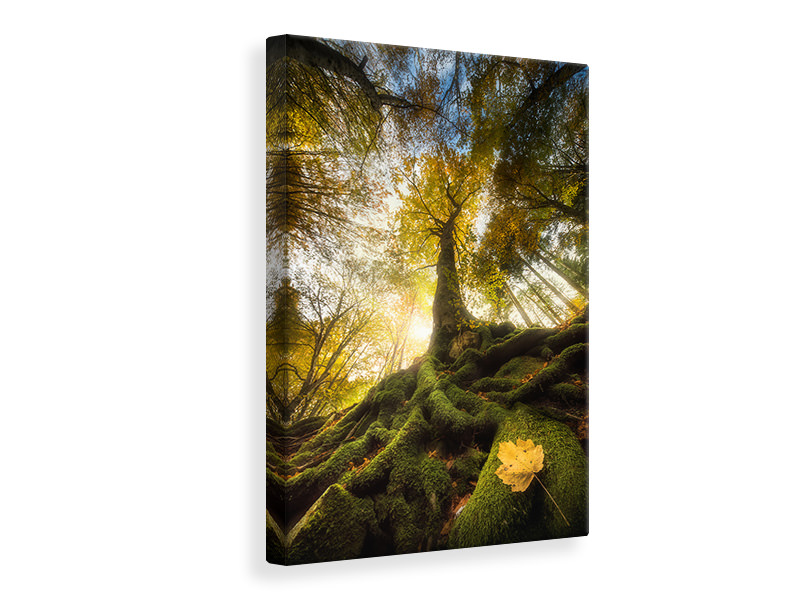 Canvas print The Goodbye Of A Leaf