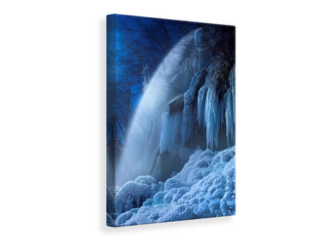 Canvas print Frozen In The Moonlight
