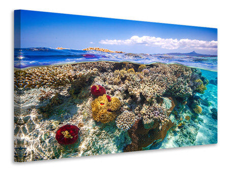 Canvas print Mayotte - the Reef