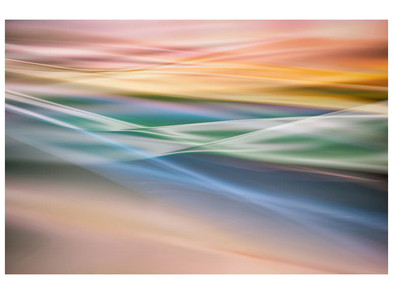 Canvas print Untitled 37