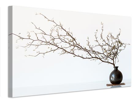 Stampa su tela Vase And Branch