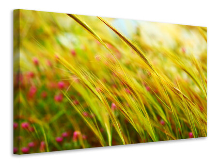 Canvas print The Wheat Field