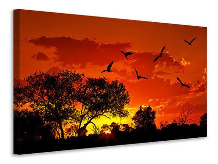 Canvas print African Feeling