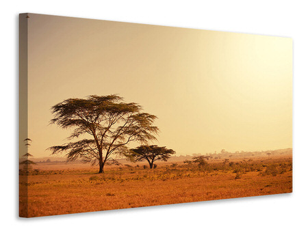 Canvas print Pastures In Kenya