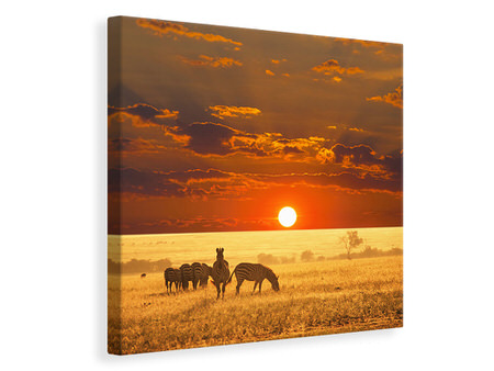 Canvas print Seregenti National Park