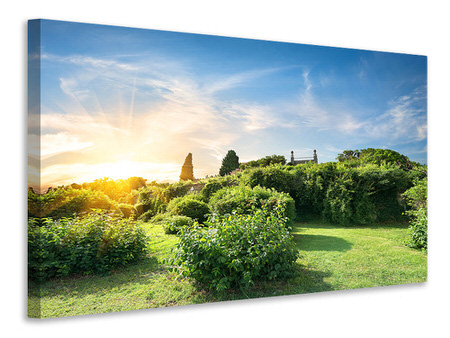 Canvas print Sunrise In The Park