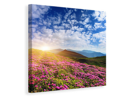 Canvas print Flowery Mountain Landscape