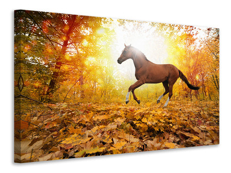 Canvas print Whole Blood In Autumn Forest