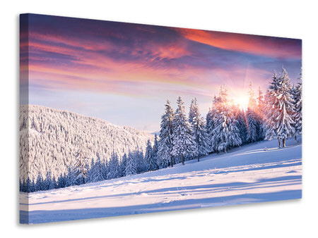 Canvas print Winter Landscape