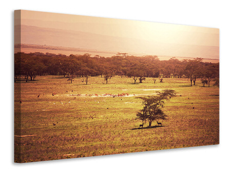 Canvas print Picturesque Africa