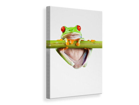 Canvas print Frog Acrobatics
